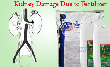 Kidney damnage13 copy