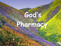 gods-pharmacy